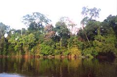 Venezuela UFO Fluss